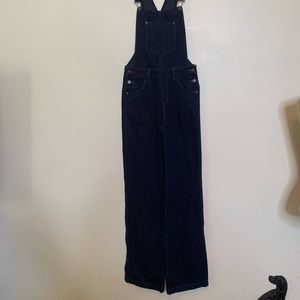New We The Free Dark Wash Denim Overall